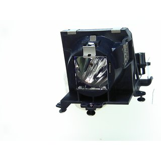 Replacement Lamp for MATRIX 2000W with housing