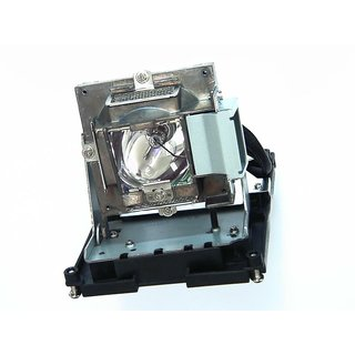Original Philips Projector Replacement Lamp for Optoma EH500