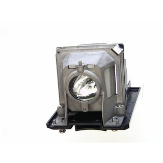 Replacement Lamp for NEC V260G with housing
